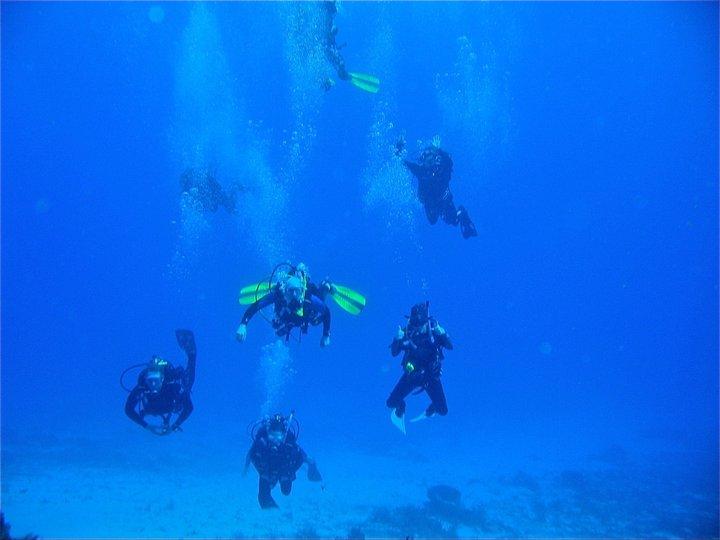 rivieramaya/divers3.jpg